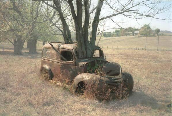 BA 144 - car and tree