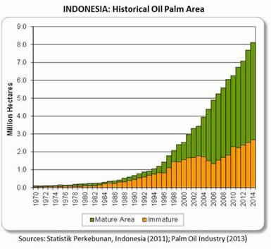 BA 153 - Stats palm oil Indonesia