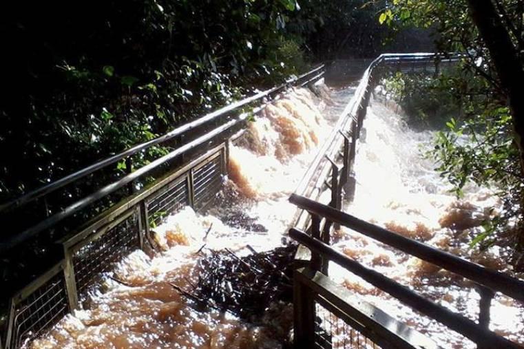 BA 161 - Pasarela Iguazu