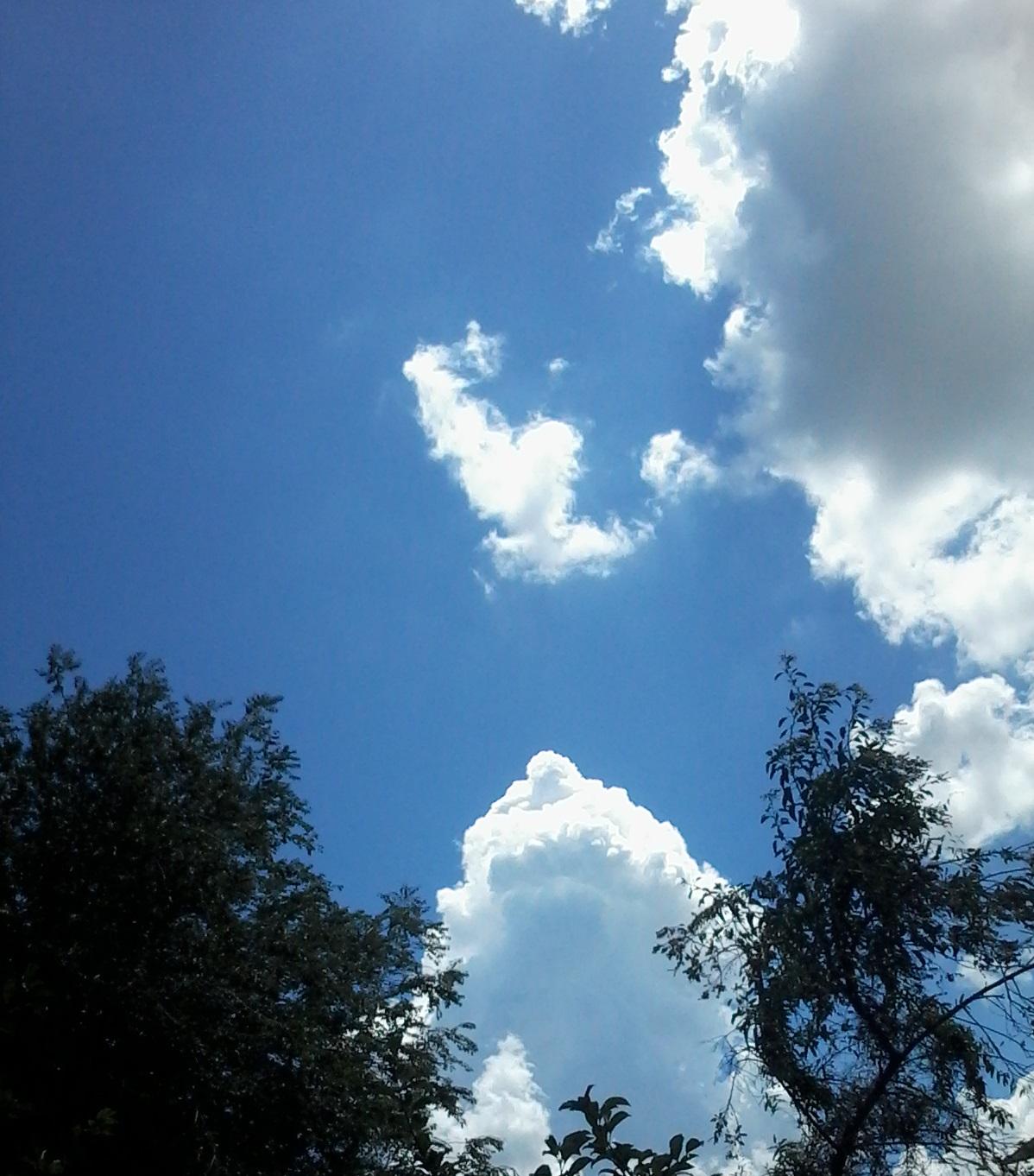 BA 223 - Nubes